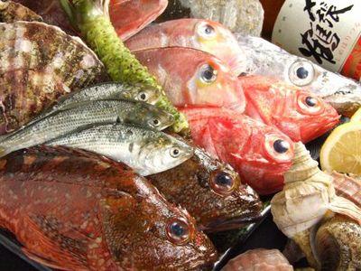 魚游 銀座店のバイト写真2